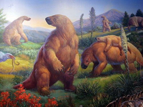 88bc876379b9a489bc4c26ef8b85a895--ground-sloth-sloths